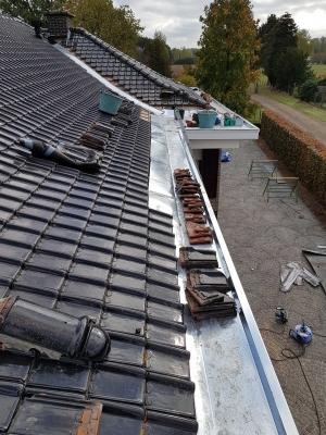 Roofings: platte en lichthellende daken